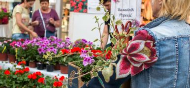 VII Fair of flowers and ornamental plants