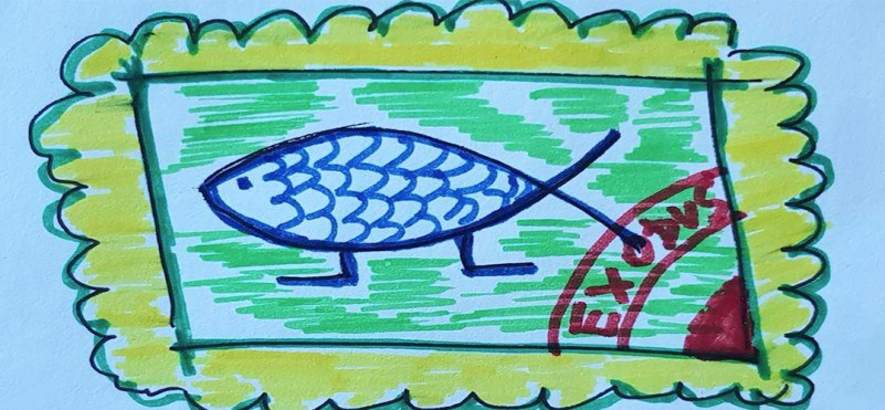 "Competition of children's creativity ""Fish with legs with children's hands"""