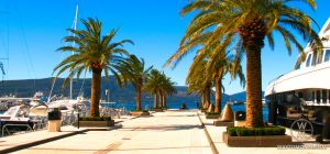 Marina for yachts, ships and boats in the exclusive area of Tivat - Porto Montenegro, Montenegro.