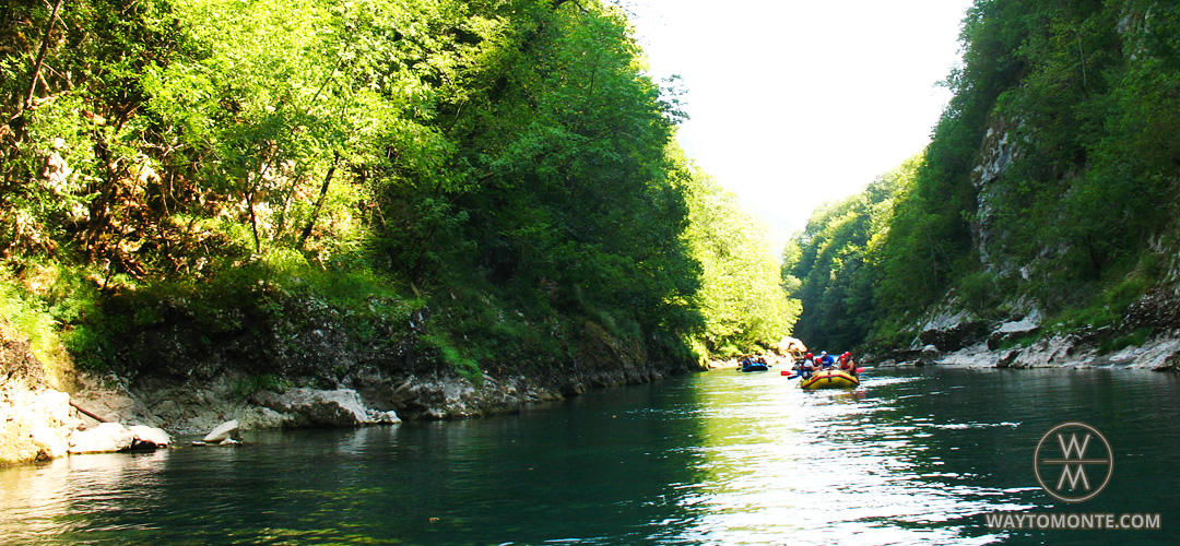 Rafting on Tara River