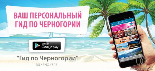 The application WayToMontenegro on Google Play