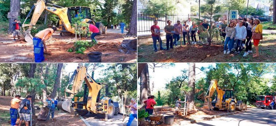 40 new seedlings planted in Tivat big city park