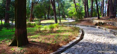 Park in Tivat