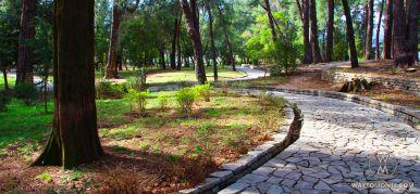 Городской парк в Тивате