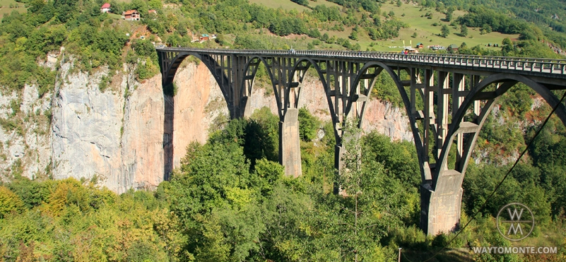 Đurđevića Bridge.photo