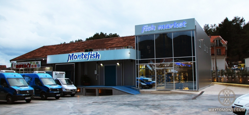 Montefish Aerodrom Tivat.photo