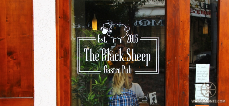 Pub-cafe The Black Sheep.photo