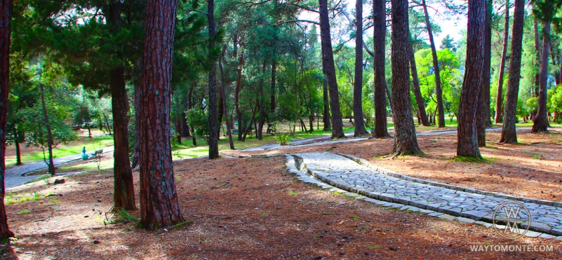 Park in Tivat.photo
