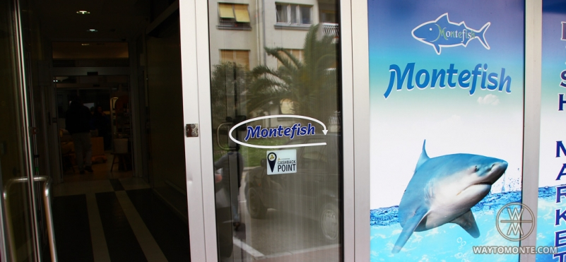 Montefish Tivat.photo