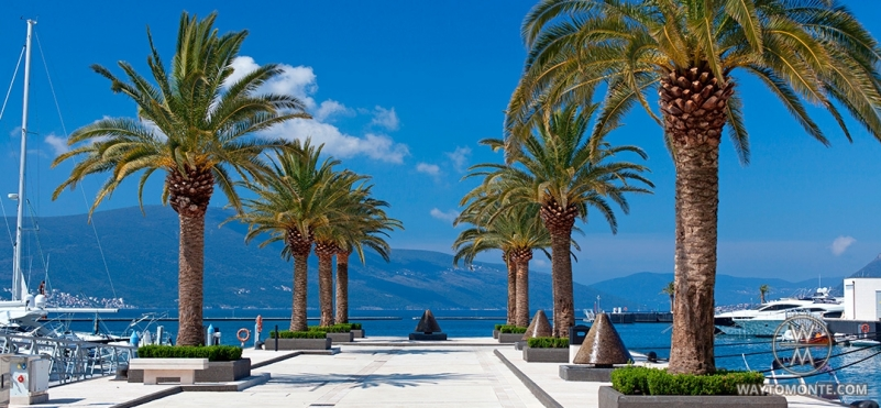 Grad Tivat.photo