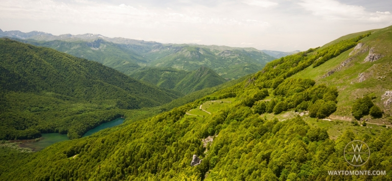 National Park Biogradska gora.photo