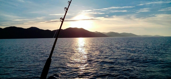 Fishing in Boka Bay or in Adriatic sea!